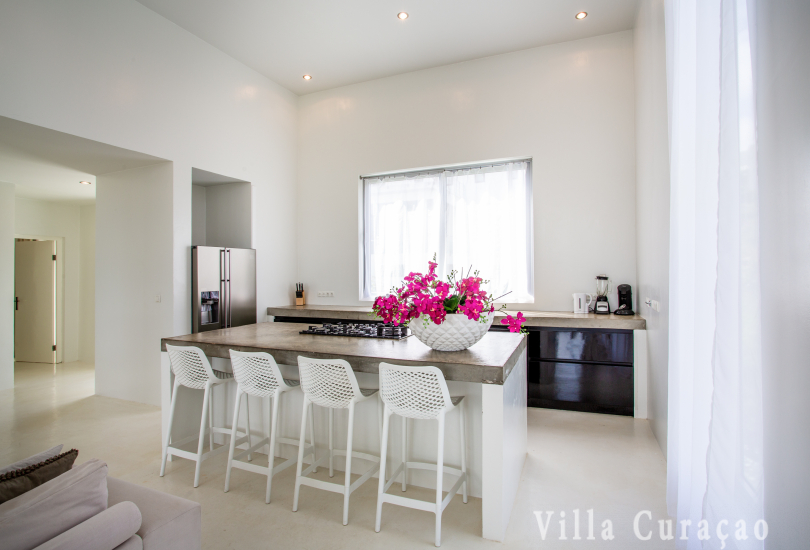 Villa Pure White
